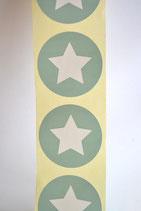 10 Stück Aufkleber Stern mint