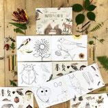 Naturmalbuch