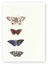 Postkarte Nr. 64