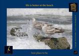 Holzpostkarte: Vögel mit hoher Welle