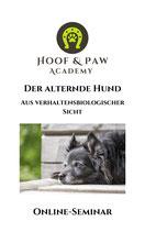 Online-Seminar - Der alternde Hund