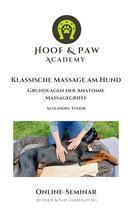 Klassische Massage am Hund