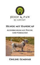 Online-Seminar - Hunde mit Handicap
