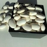令和2年産新物白花豆(エコファーマー商品)