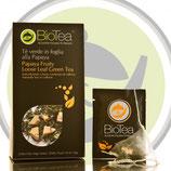 Té Verde in Foglia alla Papaya (filtri)