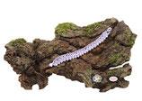 Bracelet au crochet Aerin simple rang, coton Oeko-Tex parme et Rocailles de Bohème blanches