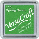 """Encre Versacraft verte """"Spring Green"""""""
