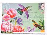 Feestelijke kaart, kolibrie