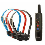PACK dressage 3 colliers  GARMIN PRO 70