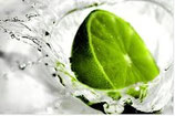 1 séance naturopathie