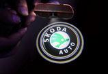 2 Stück Skoda Tür Lichter