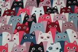 Baumwolldruck Katzen Rot Pink Bunt