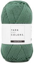 Yarn and Colors Favorite 079 Aventurine