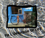 CD FullDimension Of Life