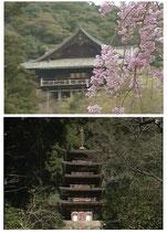 第7巻「長谷寺/室生寺」 ADV-158