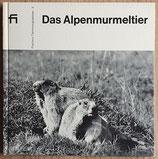 Huber Walter, Das Alpenmurmeltier