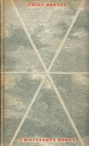 Brontë Emily, Umwitterte Höhen