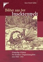 Fabre Jean Henri, Bilder aus der Insektenwelt
