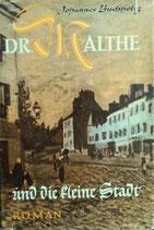Buchholtz Johannes, Dr. Malthe und die kleine Stadt