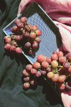 Weintraube Spulga