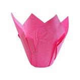 Tulipa Fucisa para Muffins