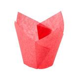Tulipa Roja para Muffins