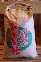 26年産 登米市産(特別栽培米)ひとめぼれ