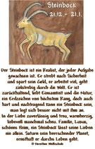 Steinbock ( 22. Dezember - 20. Januar )