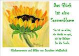 Das Glück ist eine Sonnenblume