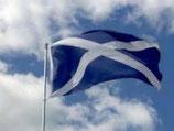 Vlag Schotland St Andrews / Saltire