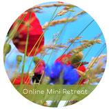 Online Mini Retreat