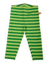 Lipfish Leggings green lime striped