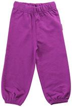 Sale! 50 % Maxomorra Basic Hosen purple Gr. 74/80