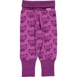 Maxomorra Ribpants Cat  Purple