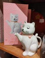 Sass & Belle theepot kat