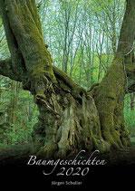 Baumgeschichtenkalender 2020 im Großformat!