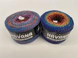 Premium Quality Havana