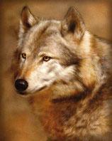 Mug Wolf Portrait
