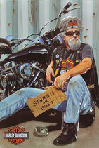 Harley Biker