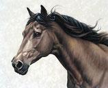 Mug Horse profil
