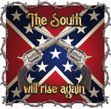Mug South Will Rise