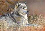 Mug Wolf Standing
