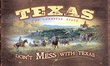 Mug Don't Mess with Texas