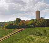 Grape Escape Rhein Valley ( Rhienghau, Nahe, Rhienhessen) FULL DAY OUT