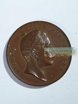 Medaille - Für Verdienste um das Militair-Brieftaubenwesen