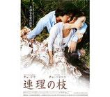 連理の枝(チラシ・アジア映画)