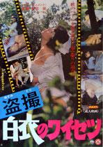 盗撮 白衣のワイセツ(ピンク映画ポスター)