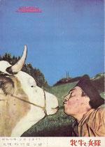 牝牛と兵隊(洋画パンフレット)