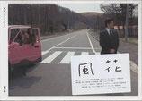 風花(未開封新品/邦画パンフレット)