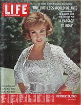 LIFE/INTERNATIONAL EDITION(ライフ・1960年10月24日号/表紙・ジーナ・ロロブリジーダ)